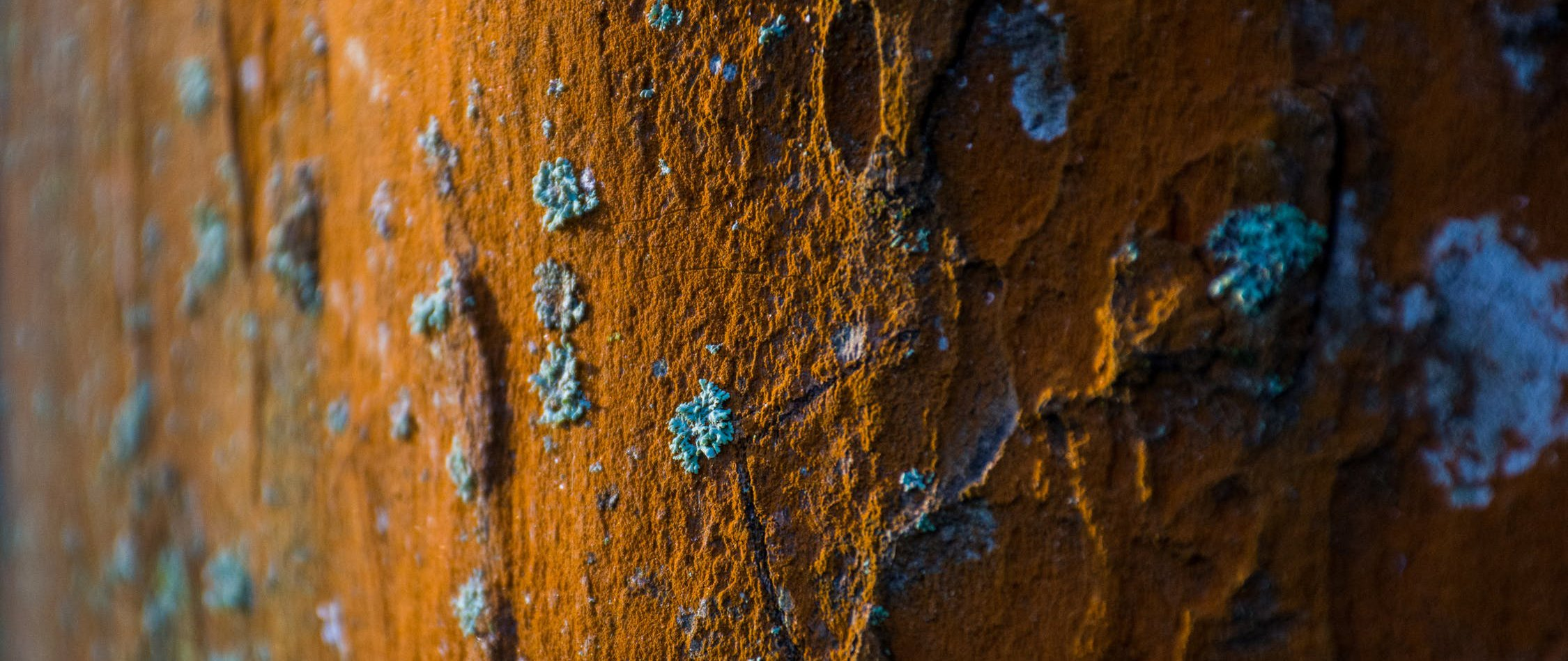 Corrosion affects your boiler